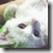 wps_clip_image-4939